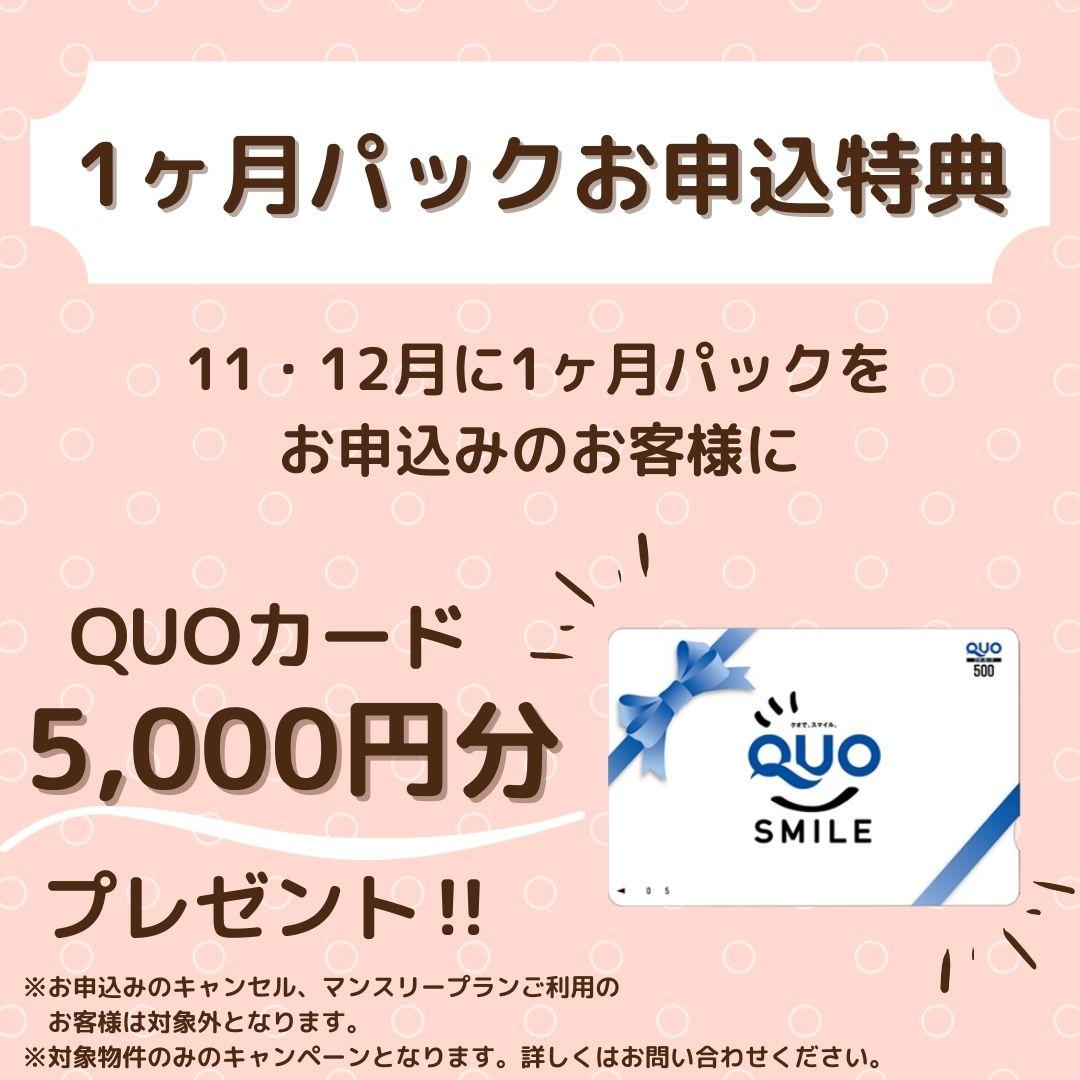 QUOカードプレゼント‼